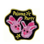 Junior Girl Scout Bronze Award Project Pajama Party