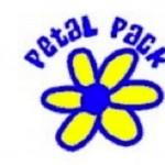 respect authority petal