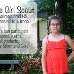 Silver Award Ideas.  16 Cadette Projects Ideas For A Juliette Girl Scout