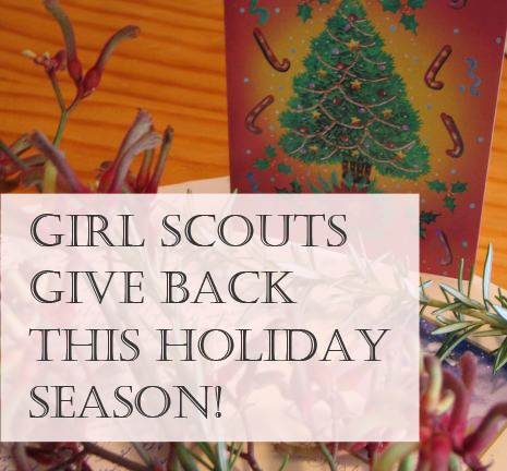 Scout Leader 411 Blog Ideas For Girl Scouts To Give Back This