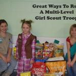 14 ideas if Planning to Have a Multi-Level Girl Scout Troop