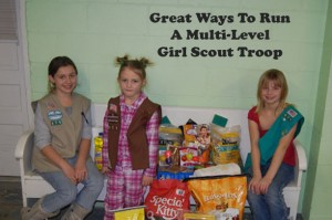 multi-level girl scout troop
