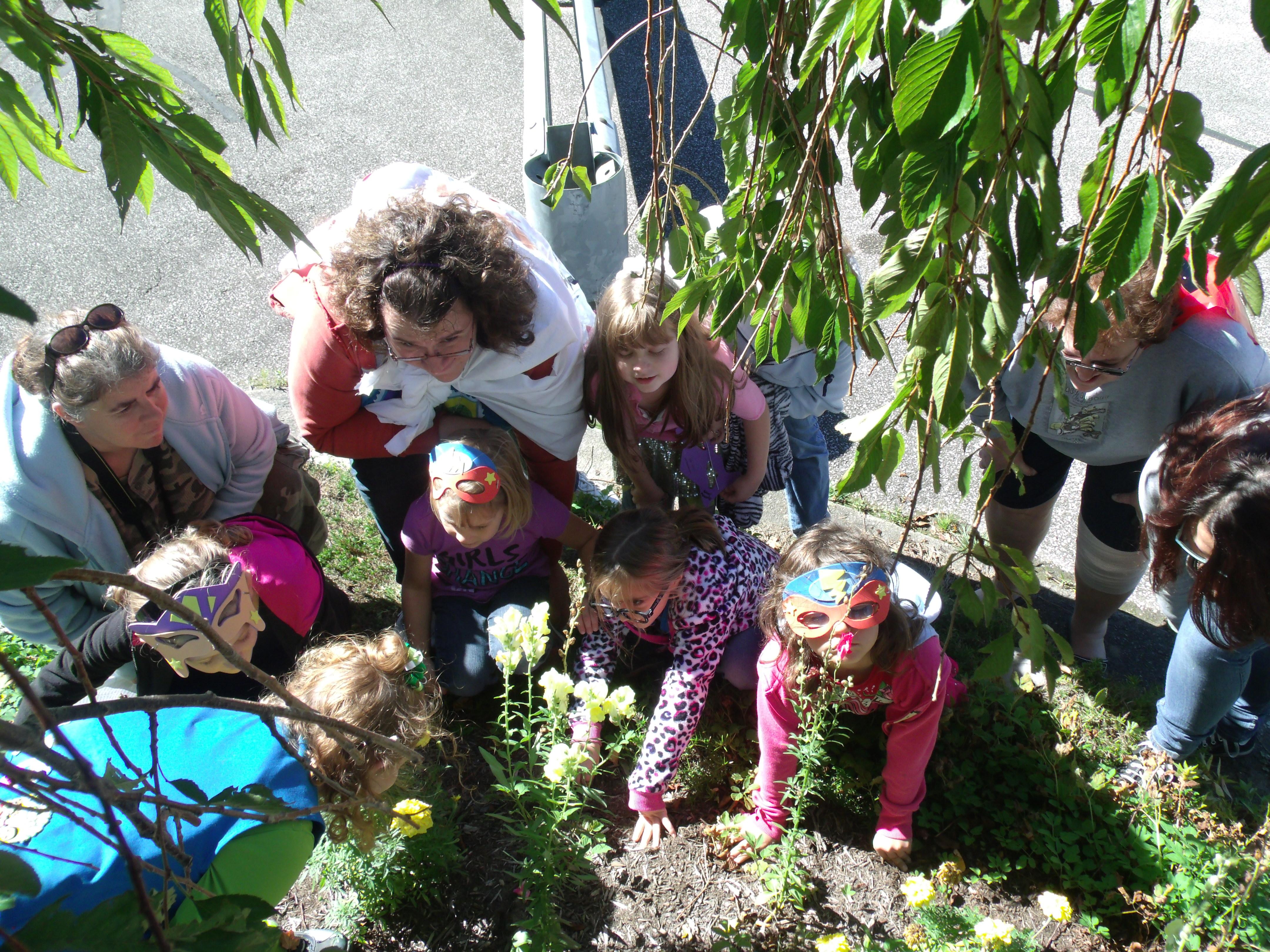 Scout leader 411 blog daisy make the world a better place petal gedsc digital camera izmirmasajfo