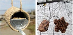 Recycled_bird-feeder