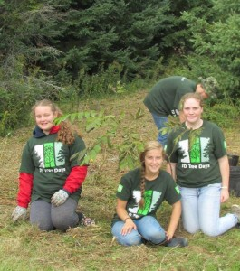 TD Trees 17th Cornwall Rangers