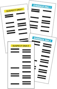 DNA Cards for the Junior Detective Badge