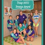 Junior Girl Scout Camp Library Bronze Award Project