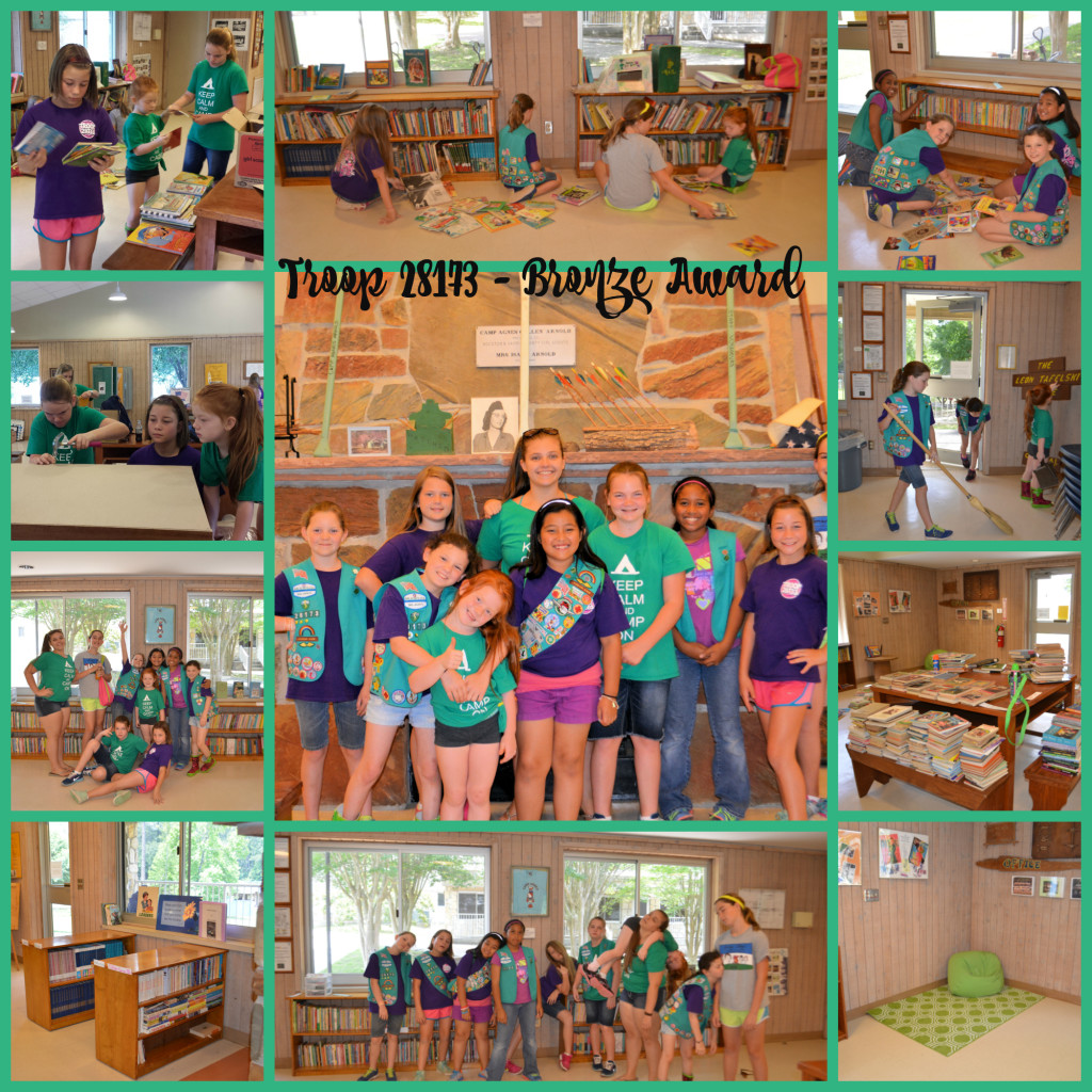 Junior GS Camp Library Bronze Award Project