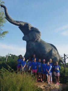 Camping at the Zoo to Earn the Animal Habitats Badge blog animal habitat zoo
