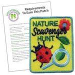 outdoor badges for multilevel troop
