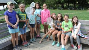 Silver Project Helps Turtles, Bees and Butterflies