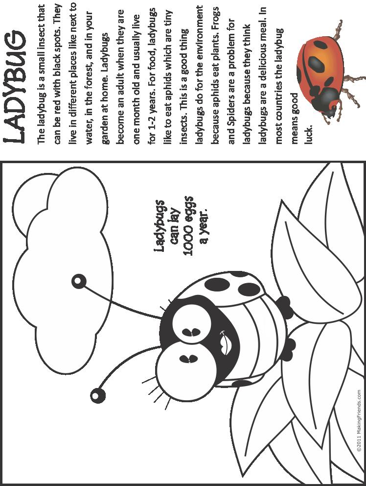 Bug Coloring Page   Ladybug - MakingFriendsMakingFriends