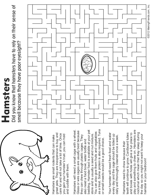 Pet Hamster, Fact and Coloring Page