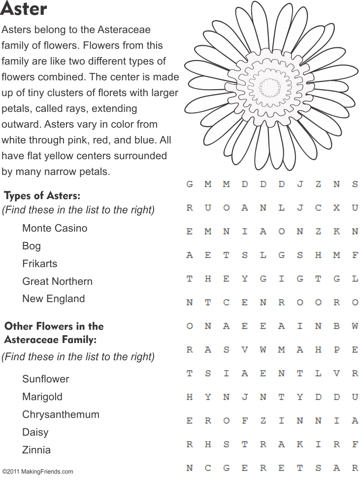 Aster Flower Word Search