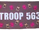 brownie_troop_banner_store.jpg