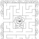 Daisy Rose Petal Maze