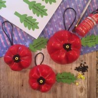 girl scouts poppy craft