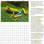 Fact Sheet and Word Search for Tree Frog Habitat