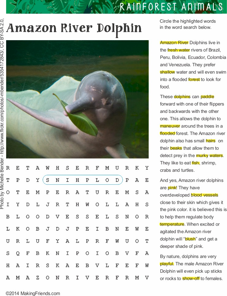 Fact Sheet And Word Search For Amazon Pink Dolphin Habitat