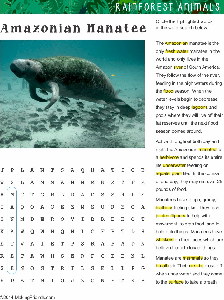 fact sheet and word search for manatee habitat