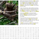 Fact Sheet and Word Search for Three-Toed Sloth Habitat