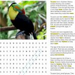 Fact Sheet and Word Search for Toucan Habitat