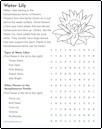 wordsearch_water_lily_thumb