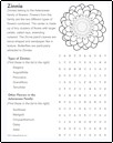 wordsearch_zinnia_thumb