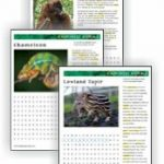 Animal Habitats | Fact Sheets and Word Search Puzzles