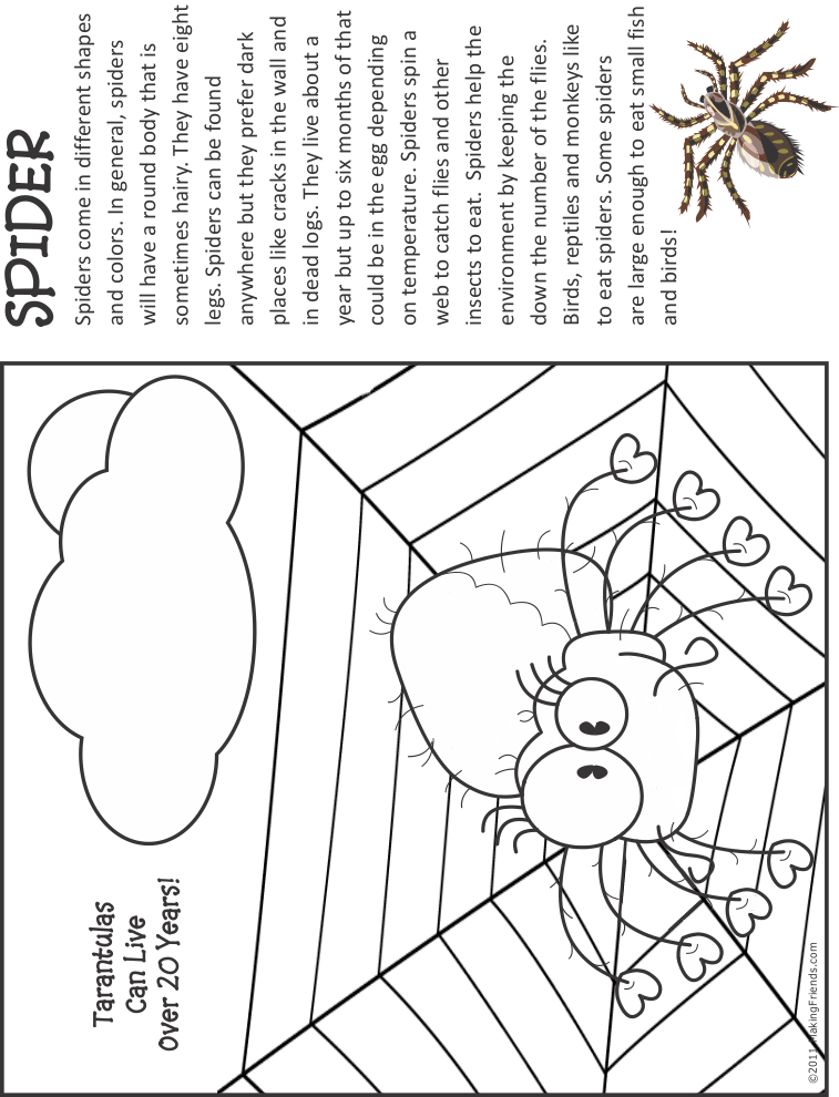 coloring_page_spider1