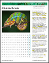 rainforest-animal-habitat-chameleon-thumb