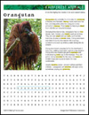 rainforest-animal-habitat-orangutan1-thumb