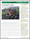 rainforest-animal-habitat-tapir-thumb
