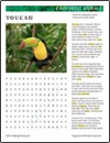 rainforest-animal-habitat-toucan-thumb
