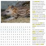 Fact Sheet and Word Search for Tapir Habitat