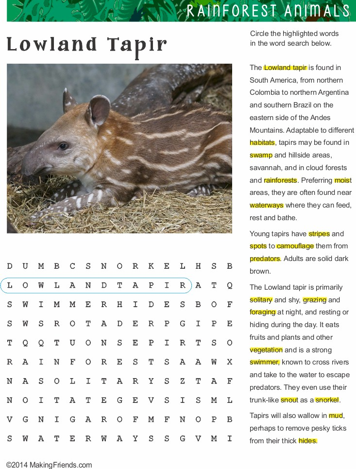 Lowland Tapir Work Sheet