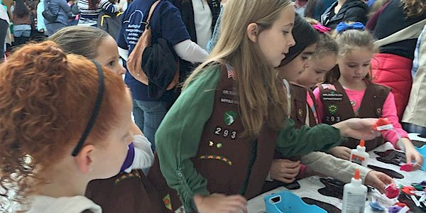Girl Scout Brownie SWAPs