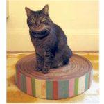 Recycled Cardboard Kitty Pad