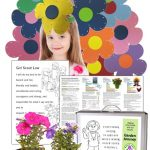Daisy Flower Garden Journey