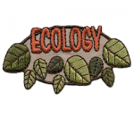 Ecology Girl Scout Fun Patch