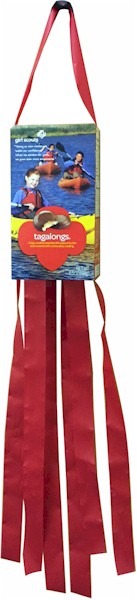 girl-scout-cookie-box-windsock