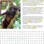 Fact Sheet and Word Search for Orangutan Habitat