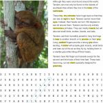 Fact Sheet and Word Search for Tarsier Habitat