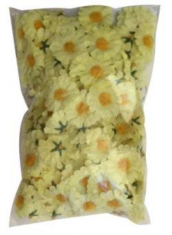 daisy-yellow-flowers