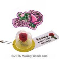 Girl Scout Beauty SWAP