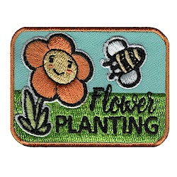 Girl Scouts honey bees