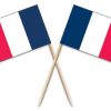 France Toothpick Flags