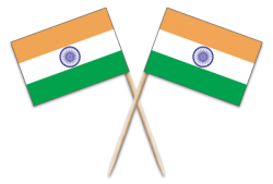 India Toothpick Flags