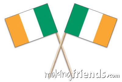 Ireland Toothpick Flags via @gsleader411