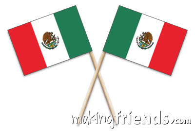 Mexico Toothpick Flags via @gsleader411